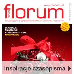 Inspiracje bożonarodzeniowe czasopisma