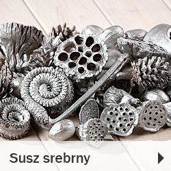Susze egzotyczny dekoracyjny srebrny