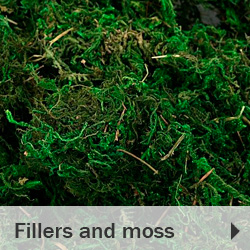 Fillers moss and lichens