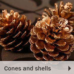 Cones and shells