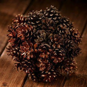 Ball of cones 16-20 cm