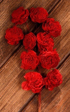 Belly 20-25 mm flowers on wire 15pcs/pkg -red