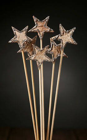 Birch stars on stick, 6 pcs/pkg, silver