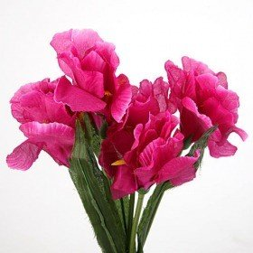 Bouquet of iris, fuchsia, 38 cm