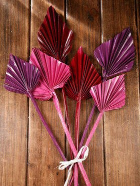 Bunch of dry palm leaves - claret, purple, pink