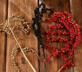 Canella twigs with fruits, 3 pcs/pkg, 20-30 cm, gold-black-red
