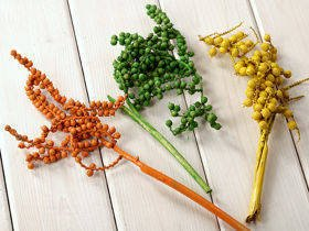 Coloured Canella Mix, yellow-green-orange, 3 pcs/pkg