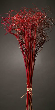 Curly grass, bunch, red-claret