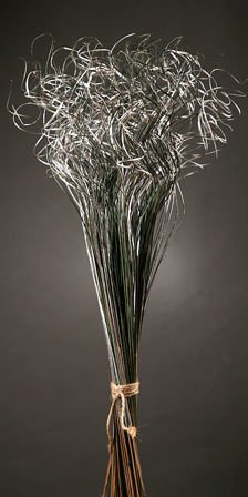 Curly grass, bunch, -silver