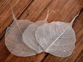 Decorative leaves 10cm 20pcs/pkg silver