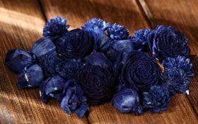 Dried flowers, 2-3 cm, ca. 60 pcs/pkg navy blue