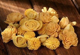 Dried flowers  SOLA, 2-3 cm, 60 pcs/pkg sonny