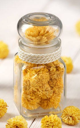 Dry plants in glass container yellow