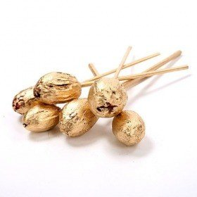 Exotic fruits on stick 6 pcs/pkg - 30 cm, gold