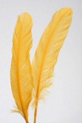 Feathers 19 cm 10 pcs/pkg - yellow