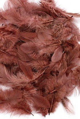 Feathers ca. 200 pcs - brown