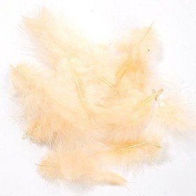 Feathers ca. 200 pcs - cream