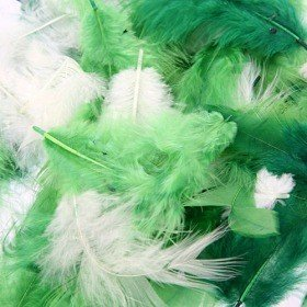 Feathers ca. 200 pcs - green/cream