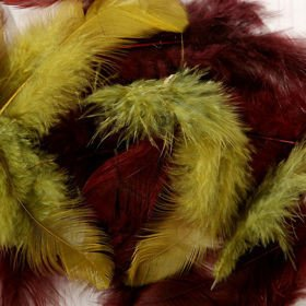 Feathers ca. 200 pcs - mix: olive/brown
