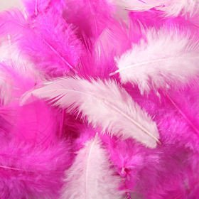 Feathers ca. 200 pcs - mix: pink