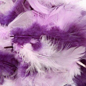 Feathers ca. 200 pcs - purple