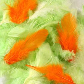 Feathers ca. 200 pcs - spring mix