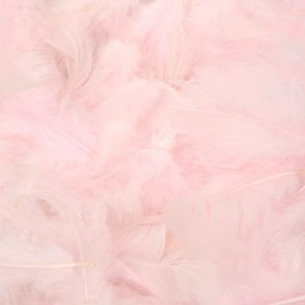 Feathers in box ca. 200 pcs/pkg - pink