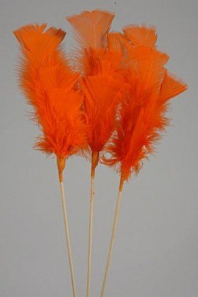 Feathers on stick (3 pcs) 34 cm, orange