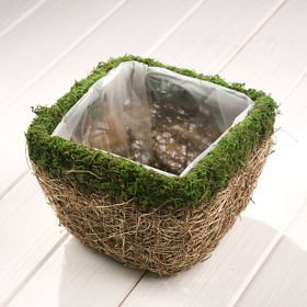 Gold-plated flower pot of moss 17/23/23 cm