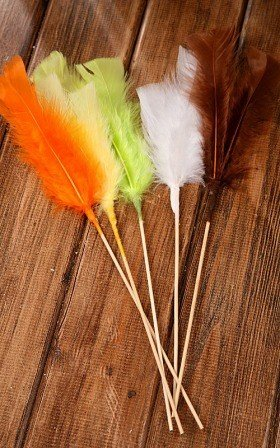 Long Feathers mix 5pcs/pkg