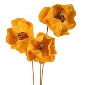 Magnoilas sola on stick, 3 pcs/pkg - yellow