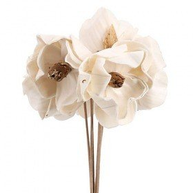 Magnolia flowers on stem - 3 pcs/pkg white