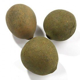 Mat Lignified fruit ball 6-8 cm, green