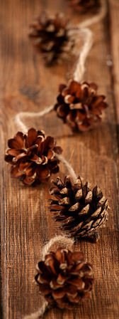 Natural cones garland (200cm)