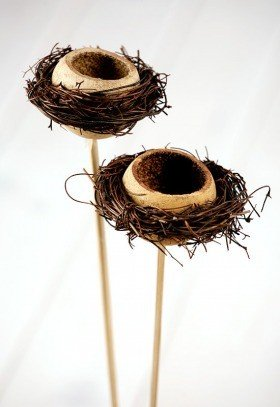Nest of branches and lignifed hull on stick
