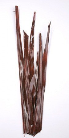 Palm leaf 30-40 cm 6 pcs/pkg brown