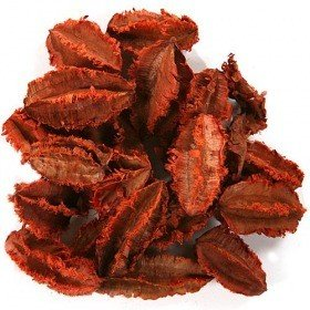 Potpourri – Khej husks 30g - orange ca. 0.5 l