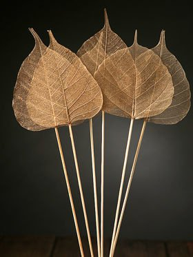 Skeleton leaves on sticks 6 pcs/pkg gold