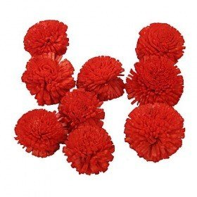 Star Flowers SOLA  3 cm 24 pcs/pkg, light red
