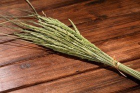 Tuft of grass, 90 cm, ca. 30 pcs/pkg, green