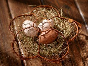 Wire basket with eggs and hay 15 cm