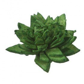 Zinia flowers, 3 cm, 24 pcs/pkg - dark green PROMOTION