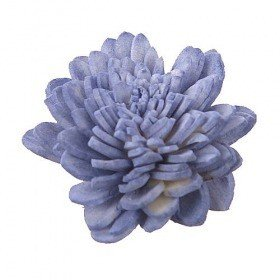 Zinia flowers, 3 cm, 24 pcs/pkg - light purple PTOMOTION
