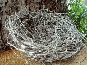 nest of fascine with feather