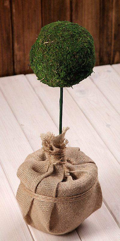 moss ball in flower pot 70 80 cm decorations on stick other mosses lichens ready made. Black Bedroom Furniture Sets. Home Design Ideas