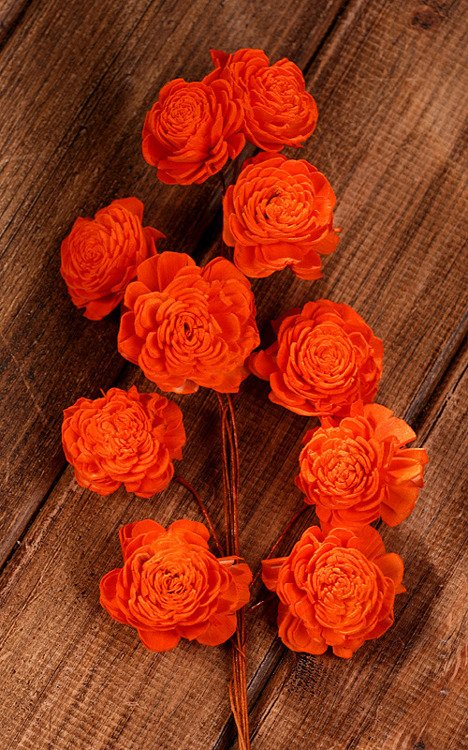 Belly flower 20-25 mm on wire 15 pcs orange