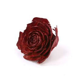 Cedar Wood Roses 12pcs./pack Claret Lacquered