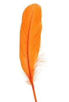 Feathers 19 cm 10 pcs/pkg - orange