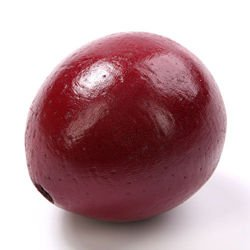 Lacquered Lignified fruit ball 6-8 cm, claret