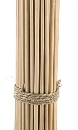 Reed sticks, ca. 30 cm, 50 pcs/bunch